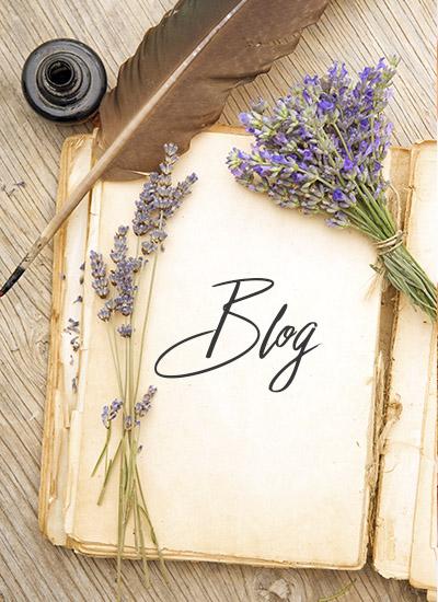 El Blog de My Angel Star